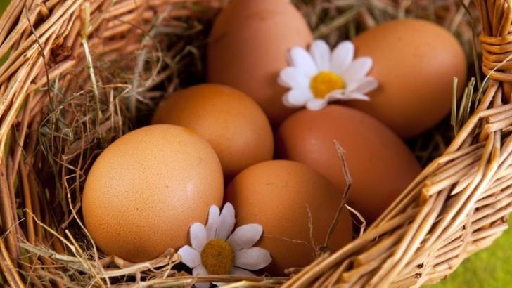 Куриные яйца: польза и вред.